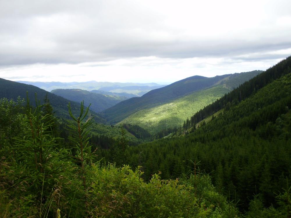Transylvania Tour - Pictures (4/6)
